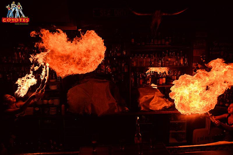Fire Show Coyotes Prague